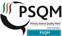 PSQM (Primary Science Quality Mark)